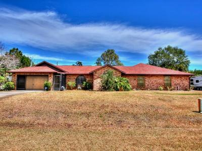 Sebastian Single Family Home For Sale: 1119 George Street