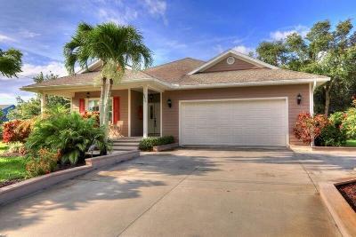 Sebastian Single Family Home For Sale: 6675 110th Street