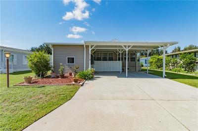 Sebastian Single Family Home For Sale: 403 Avocado Drive