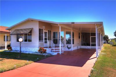 Sebastian Single Family Home For Sale: 832 Hawthorn Circle