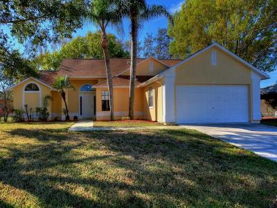Sebastian Single Family Home For Sale: 458 Lanfair Avenue