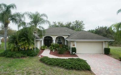 Sebastian Single Family Home For Sale: 819 Roseland Road