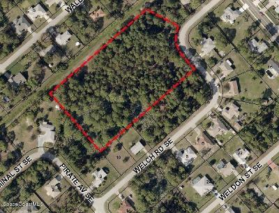 Vero Beach, Indian River Shores, Melbourne Beach, Melbourne, Sebastian, Palm Bay, Orchid Island, Micco, Indialantic, Satellite Beach Residential Lots & Land For Sale: Xxx SE Welch Road