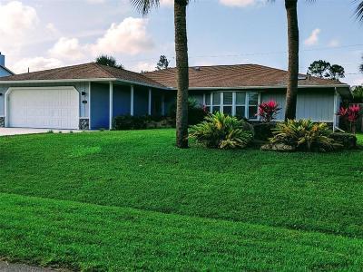Sebastian Single Family Home For Sale: 221 Degan Place