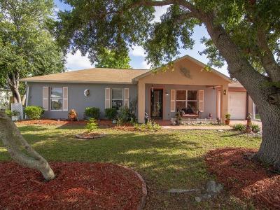 Sebastian Single Family Home For Sale: 106 Osceola Avenue