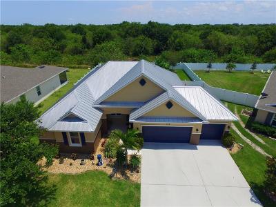 Sebastian Single Family Home For Sale: 124 Salazar Lane