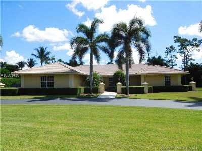 Lake Worth Single Family Home Active With Contract: 9320 Dundee Dr