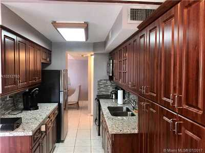 Sunny Isles Beach Condo For Sale: 231 174th St #2316