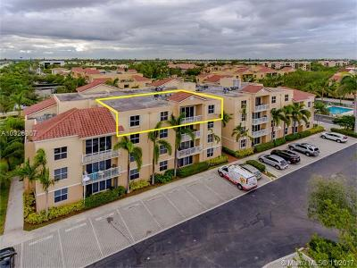 Dania Beach Condo Active-Available: 609 East Sheridan St #403
