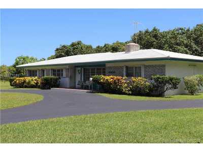Palmetto Bay Single Family Home For Sale: 9000 SW 174th St