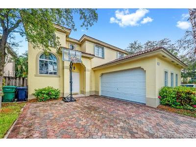 Palmetto Bay Single Family Home For Sale: 9130 SW 162 St