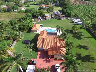 Homestead Single Family Home For Sale: 21075 SW 246th St