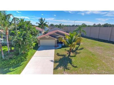 Jupiter Single Family Home For Sale: 6454 Drake Street