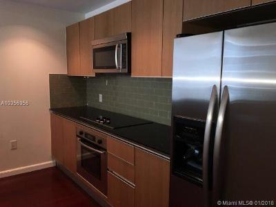 Miami Condo For Sale: 1060 Brickell Ave #2817