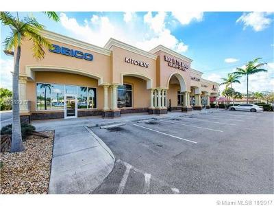 Davie FL Commercial For Sale: $4,400