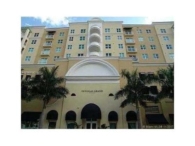 Coral Gables Condo For Sale: 50 Menores Ave #504