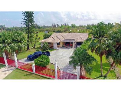 Single Family Home For Sale: 19990 SW 129
