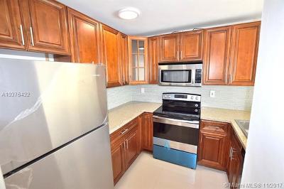 Miami FL Condo For Sale: $104,900