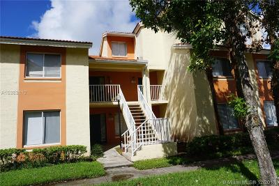 West Palm Beach Condo For Sale: 1055 The Pointe Dr #1055