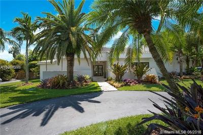 Palmetto Bay Single Family Home For Sale: 17125 SW 80th Ct