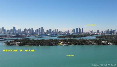 Miami Condo For Sale: 2000 N Bayshore Dr #409