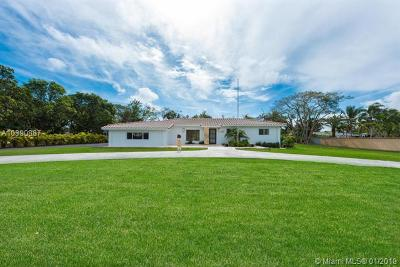 Palmetto Bay Single Family Home For Sale: 9100 SW 174th St