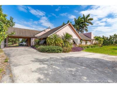 Homestead Single Family Home For Sale: 18955 SW 264 St