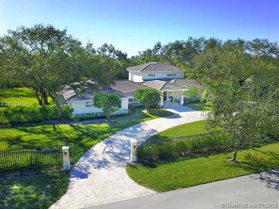 Pinecrest Single Family Home For Sale: 5850 Rolling Road Dr