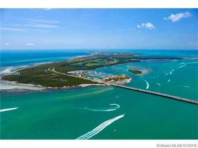 Key Biscayne Condo For Sale: 360 Ocean Dr #201S