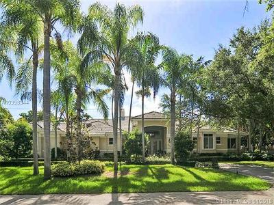 Palmetto Bay Single Family Home For Sale: 13851 SW 67 Ct