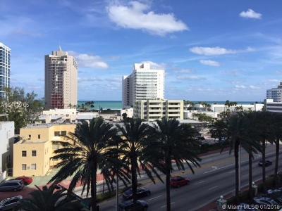 Miami Beach Condo For Sale: 6770 Indian Creek Dr #6A