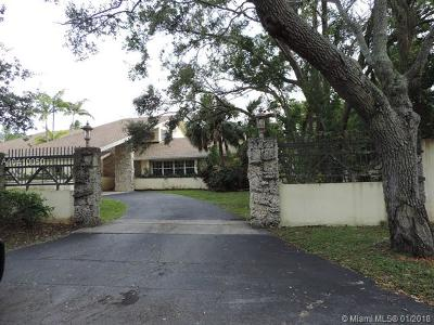 Palmetto Bay Single Family Home For Sale: 7840 SW 183rd Ter