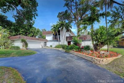 Palmetto Bay Single Family Home For Sale: 17721 SW 75th Ave