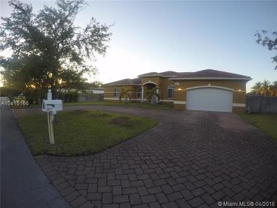 Cutler Bay Single Family Home For Sale: 8211 SW 190th Ter