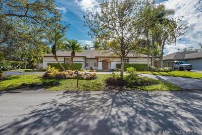 Palmetto Bay Single Family Home For Sale: 7840 SW 182 Ter