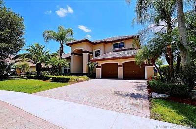 Pembroke Pines Single Family Home For Sale: 1141 SW 156 Avenue