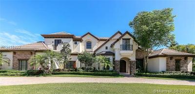 Miami-Dade County Single Family Home For Sale: 12301 Vista Ln