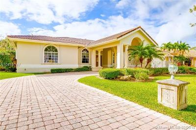 Palmetto Bay Single Family Home For Sale: 7914 SW 153rd Ter