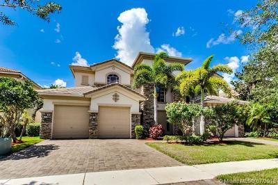 Royal Palm Beach Single Family Home For Sale: 647 Edgebrook Ln