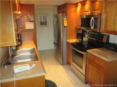 Sunny Isles Beach Condo For Sale: 290 174th St #M11