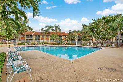 Palm Beach County Condo For Sale: 1174 The Pointe Dr #1174