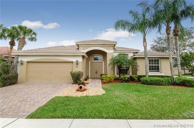 Palm Beach County Single Family Home For Sale: 6664 Murano Way