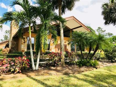 Lake Worth Single Family Home For Sale: 11227 Cowen Ct