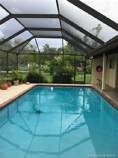 Palmetto Bay Single Family Home For Sale: 17600 SW 84th Ct