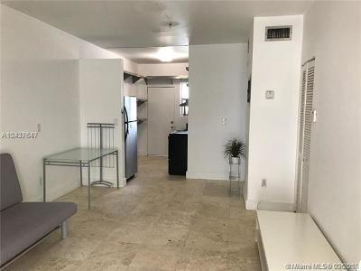 Miami Beach Condo For Sale: 1045 Lenox Ave #8