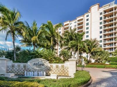 Rental For Rent: 13621 Deering Bay Dr #603