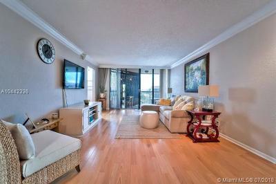 Boca Raton Condo For Sale: 800 Jeffery St #404