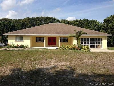 Homestead Single Family Home For Sale: 15101 SW 268th St