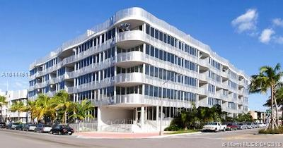 Miami Beach Condo For Sale: 2100 Park Ave #204