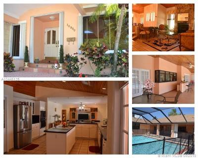 Palmetto Bay Single Family Home For Sale: 16920 SW 82nd Ave